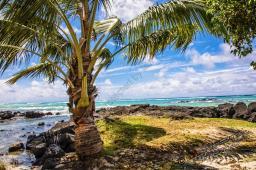 Mauritius 2018-2219