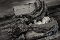 B18T0101 24 Bearbeitet - Newborns - willkommen in der Welt - portraets, newborn, kinder, babyfotos - Schwangerschaft, Newbornfotos, Kinderporträts, Kinder, Geschenke, Babyfotos