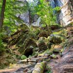 sächsische Schweiz Bastei 2018 204 - Und täglich grüßt das.................. Bewerbungsfoto ;-) - allgemein - Infos, Businessporträts, Businessfotos, Bewerbungsfotos