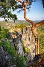 s%C3%A4chsische Schweiz Bastei 2018 346 - sächsische Schweiz - traumhafte Natur - outdoor, naturfotos, natur-staedte-deutschland, natur, allgemein - Sachsen, Naturfotos, Deutschlands schöne Seiten