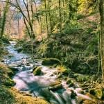 Gerolsauer Wasserfälle 143 - Kölle - wir kommen - allgemein - Die Geschichte hinter den Fotos, Allgemein