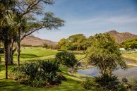Südafrika 2019 1070 - Afrika - Ein Traum wurde wahr - urlaubsfotos, outdoor, offene-worte, non-commercial, naturfotos, natur, allgemein, alles, abseits-des-alltags -
