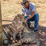Südafrika 2019 1278 - DANKE--- Und für Euch Morgen ein kostenloses Facebook ( etc) Profilbild--- wenn im deutschen Trikot - gewinnspiele -