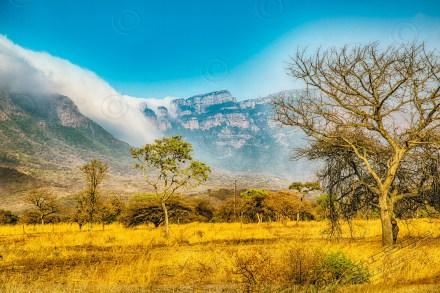 Südafrika 2019 2998 - Afrika - Ein Traum wurde wahr - urlaubsfotos, outdoor, offene-worte, non-commercial, naturfotos, natur, allgemein, alles, abseits-des-alltags -