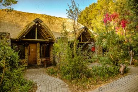 Südafrika 2019 3142 - Afrika - Ein Traum wurde wahr - urlaubsfotos, outdoor, offene-worte, non-commercial, naturfotos, natur, allgemein, alles, abseits-des-alltags -