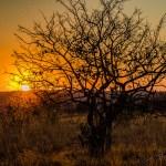 Südafrika 2019 361 - Kreativ aus Verzweiflung ;-) - werbefotos, produktfotos, funstuff, allgemein, abseits-des-alltags - Werbefotos, Produktfotos, Ein Tag im Leben eines Fotografens, Die Geschichte hinter den Fotos