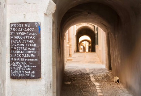 Cat walking to dinner, Dubrovnik.