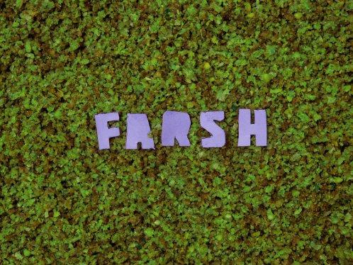 DEAF CHONKY - Farsh