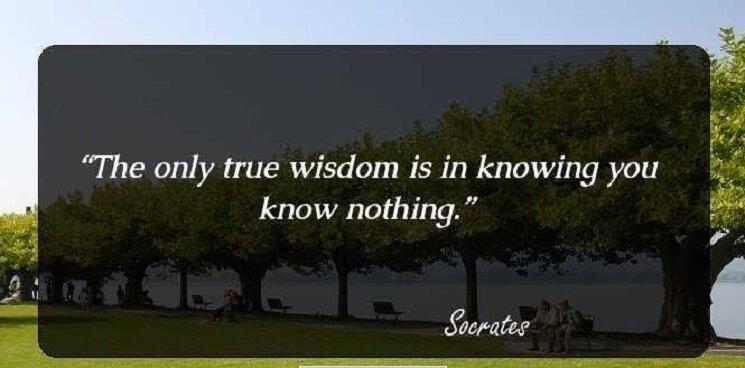 Great Greek Philosopher Full Of Wisdom