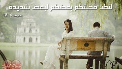 آيات عن المحبة ( 2 ) Love من العهد الجديد عربي إنجليزي