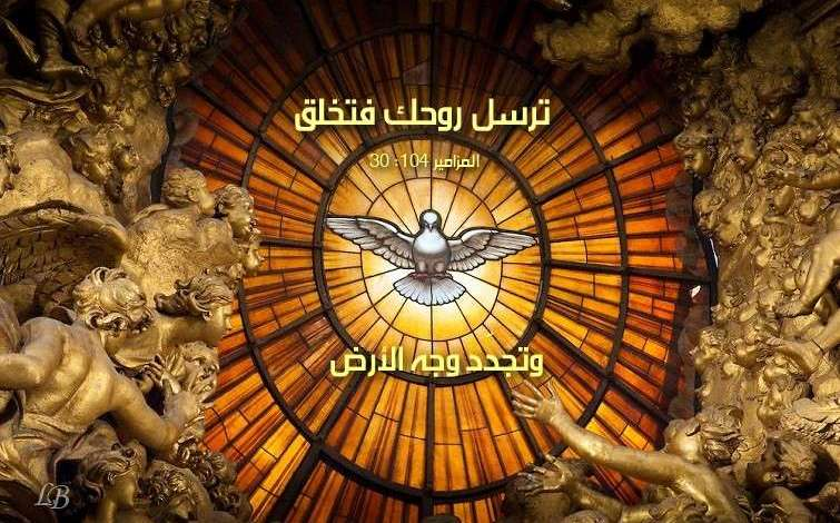 Photo of آيات عن الخلق (2) Creation من الكتاب المقدس عربي إنجليزي