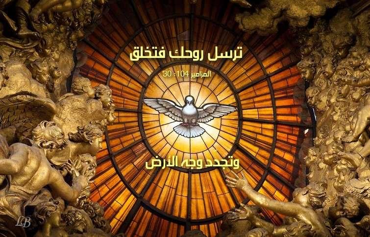 آيات عن الخلق ( 2 ) Creation من الكتاب المقدس عربي إنجليزي
