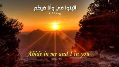 Bible Verses about Spiritual Growth in English and Arabic