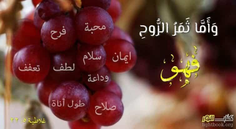 Photo of آيات حول السلام والآمان ( 5 ) Paix – عربي فرنسي