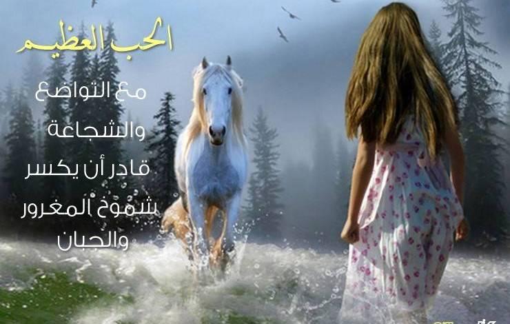 Photo of هل يعقل أن الحب العظيم مع التواضع والشجاعة قادر أن يكسر شموخ البخيل المغرور ؟! قصة وعبرة