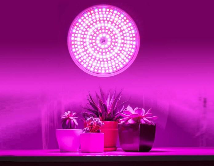 Led Horticulture Lighting