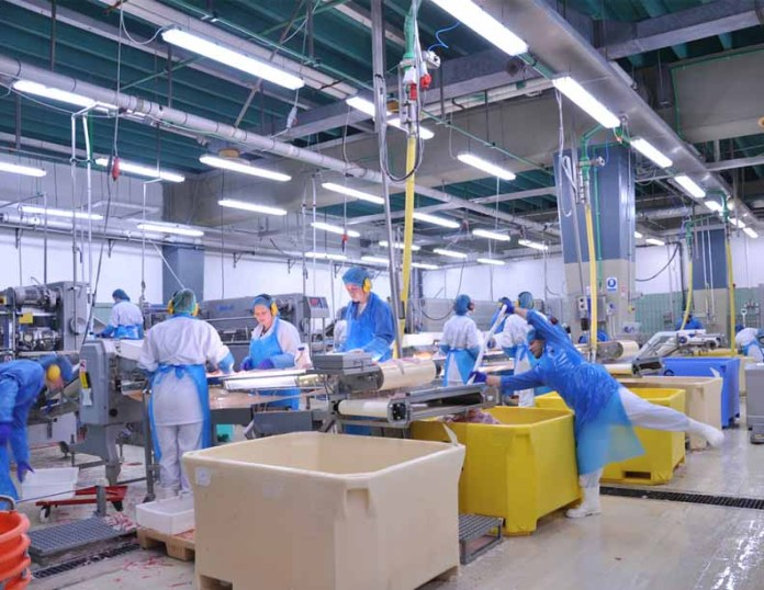 Lighting Food Processing Industry