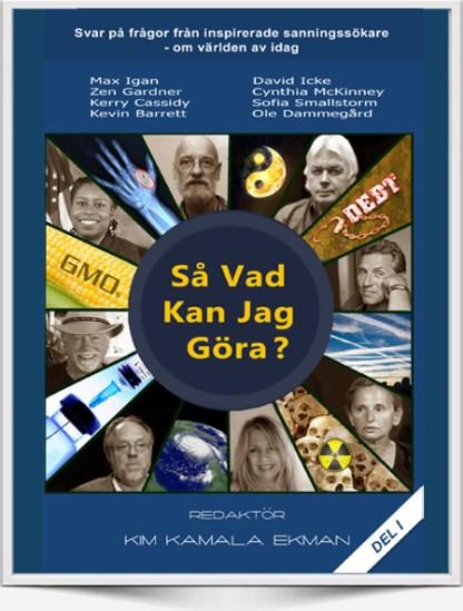 SoWhatCanIDo_Swedish