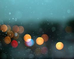 La Foto della Settimana – 16/01/2011
