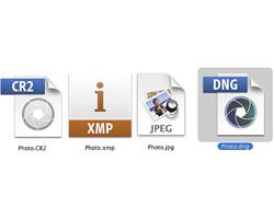 Tutto quello che dovete sapere sui file DNG. Che cosa sono? Quali pro e contro ci sono? Conviene utilizzarli?