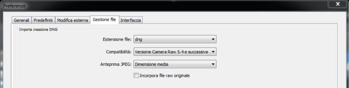01 lightroom raw dng conversione importazione preferenze gestione file copia