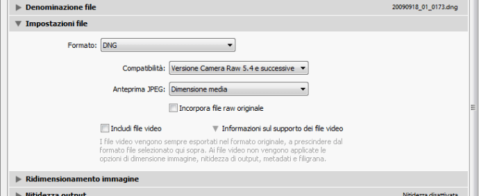 04 lightroom raw dng conversione importazione preferenze gestione file copia
