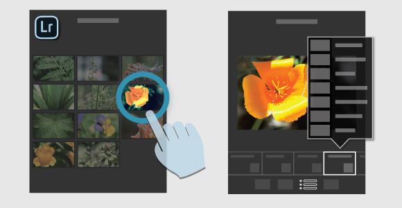 adobe lightroom mobile ipad tutorial guida gratis 07