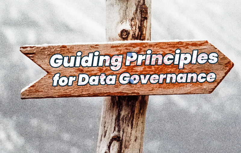 data governance guiding principles