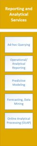 business intelligence reporting services
