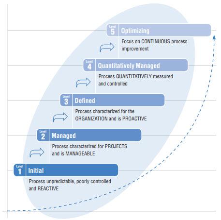 IBM DG model