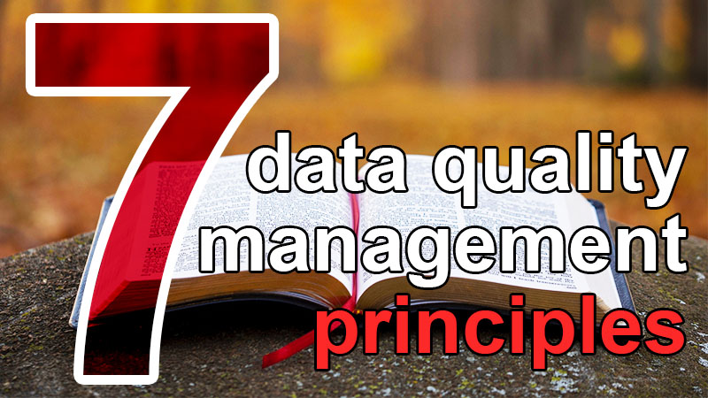 7 data quality management principles