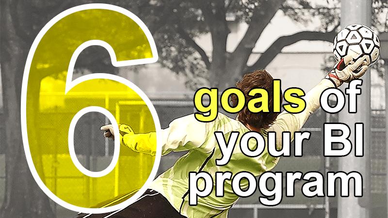 6 goals BI program
