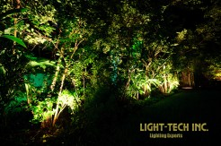 Low voltage up-lights