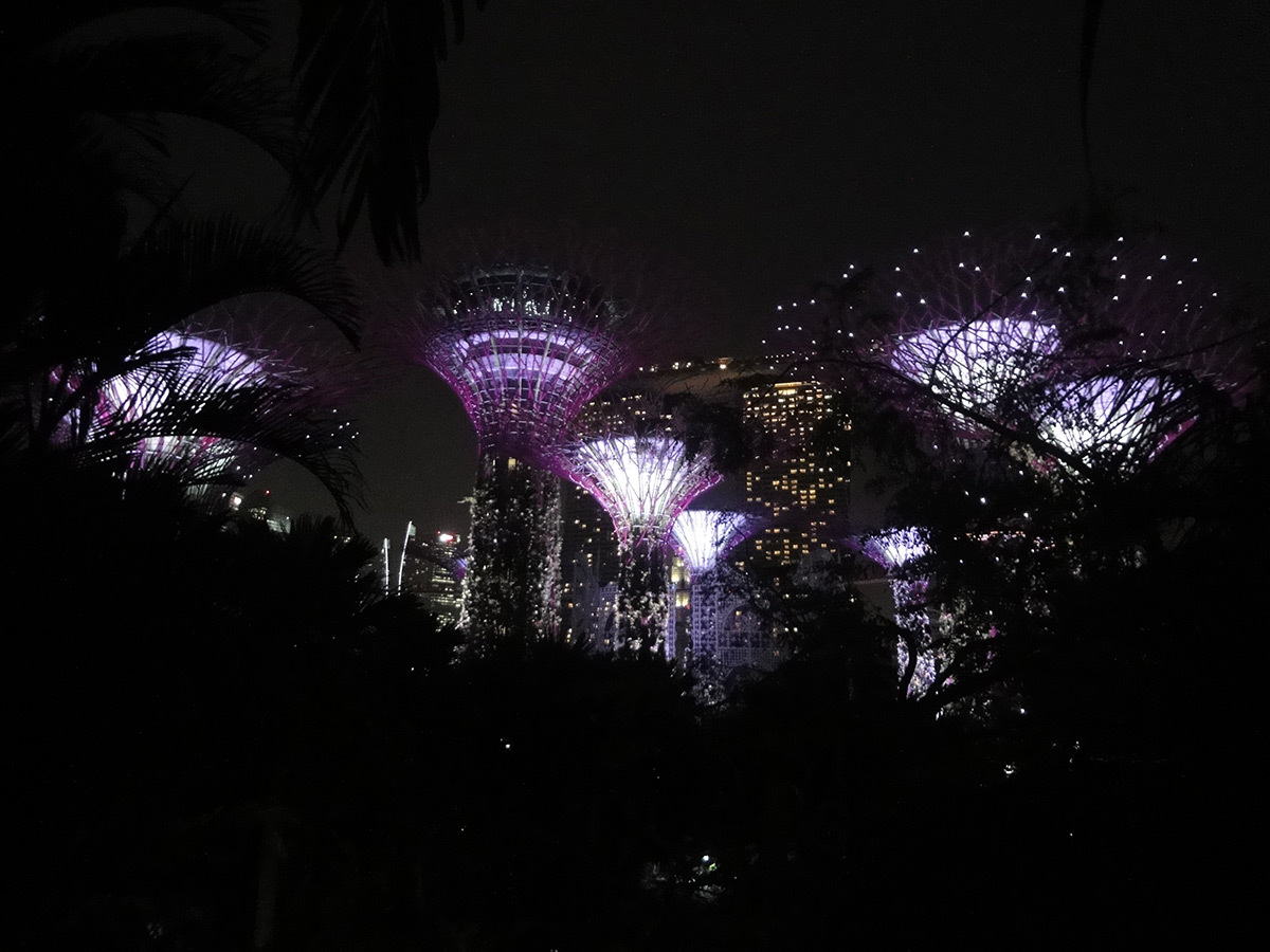 Illumination de Gardens by the Bay © Roger Narboni
