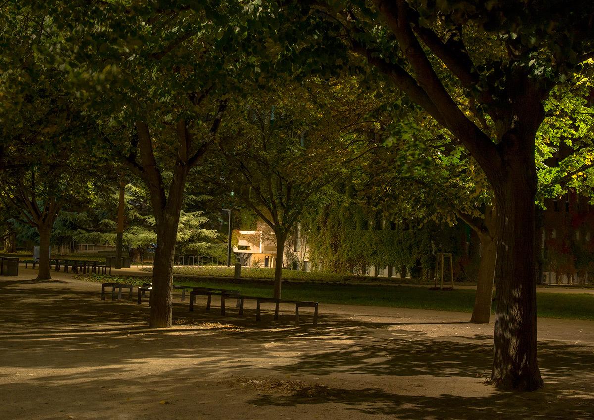Allée du parc entre ombre et lumière - Parc de université de Strasbourg © Charles Vicarini