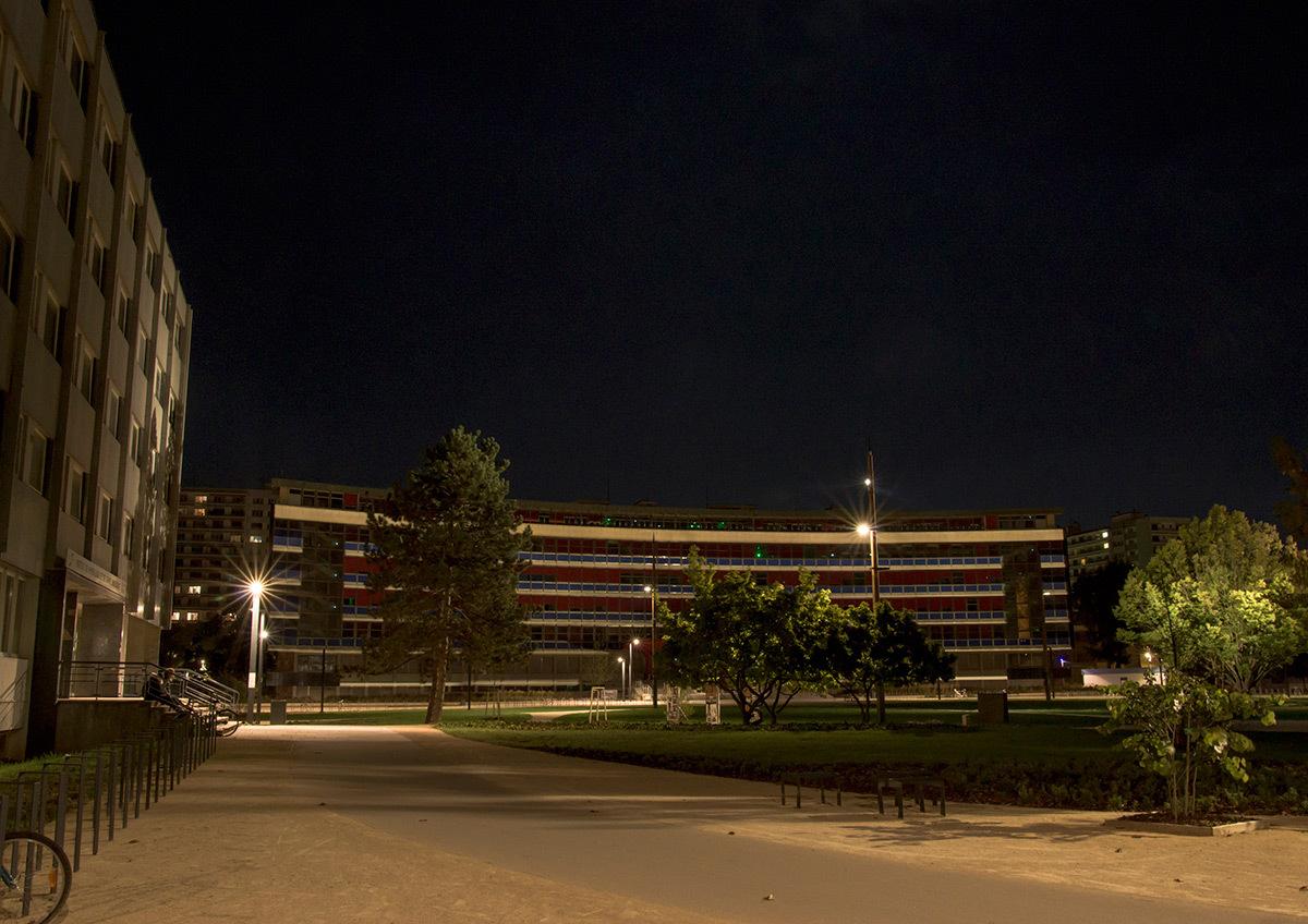 Touches de lumière sur les allées - Parc de université de Strasbourg © Charles Vicarini