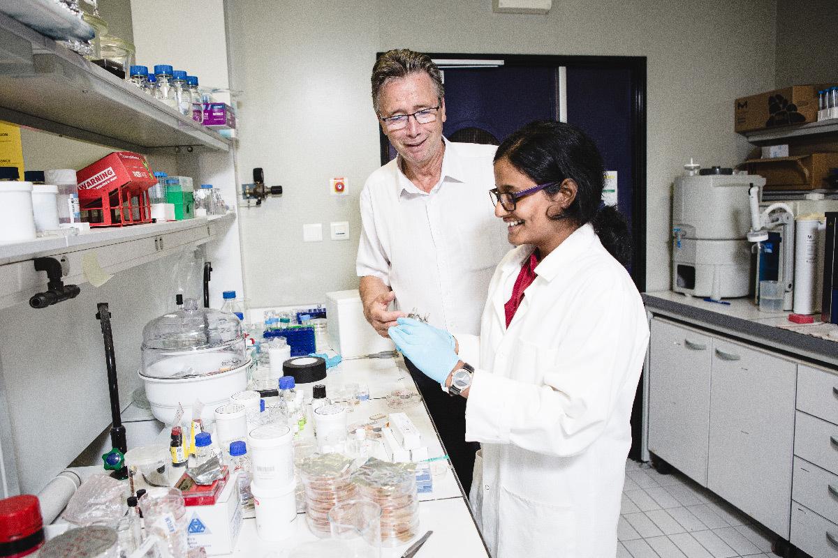 Thomas Ebbesen et Kripa Joseph dans une salle de chimie au Laboratoire des nanostructures à l'Institut de science et d'ingénierie supramoléculaires (ISIS, CNRS/Université de Strasbourg) © Frédérique PLAS - ISIS - CNRS Photothèque