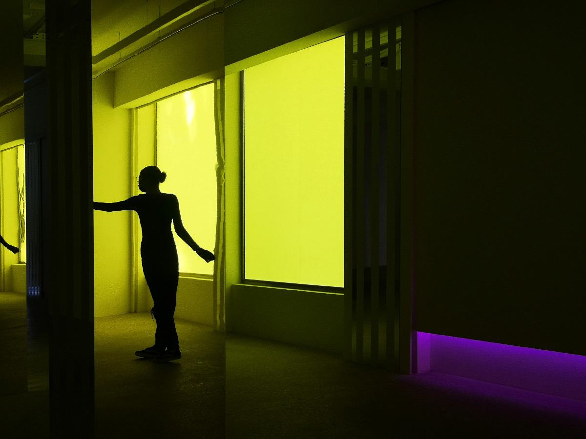 Daniel Buren – Philippe Parreno « Simultanément, travaux in situ et en mouvement », galerie Kamel Mennour, Paris, 2020