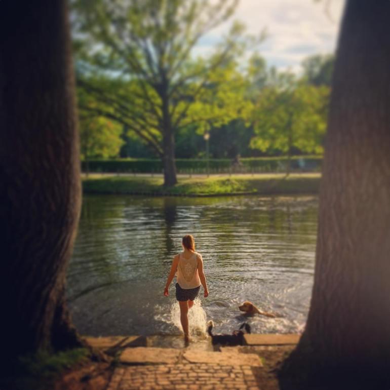 #paracegover Descrição para deficientes visuais: a imagem mostra uma moça, de costas, chutando a água de um lago para brincar com seus dois cachorros, que parecem estar se divertindo muito. A cena é emoldurada pelos troncos de duas árvores. — at Beethoven-Haydn-Mozart-Denkmal.