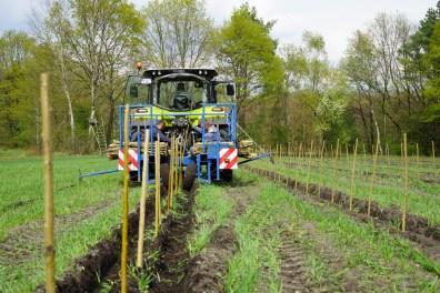 Rutenpflanzung LignoPlanter-R