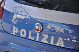 Polizia sequestra uccelli