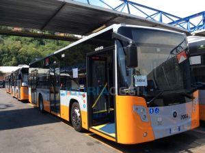 autobus-nuovi-regione