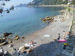 """Santa Margherita, apre la nuova """"Bau Bau Beach"""""""