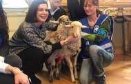 Boldrini adotta due agnellini e li porta a Montecitorio