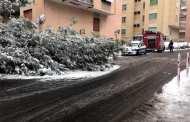 Neve a Genova, a Marassi precipita un albero davanti ad una scuola elementare