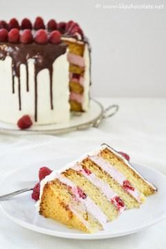 torta s malinama i bijelom čokoladom (7)