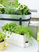 zeleni balkon (3)