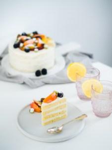 torta od svjezeg sira i limuna (3)