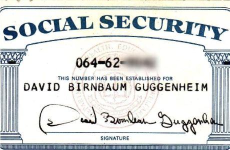 David Birnbaum Guggenheim