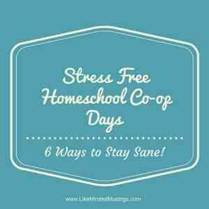 Stress Free Homeschool Co-op Days Like Minded Musings